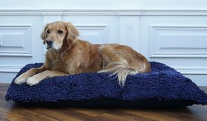 Dog Dryer Cover on a 110x68cm bed with a Golden Retriever.