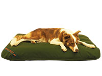 Collie on Durasoft bed. Very scratch resistant surface.