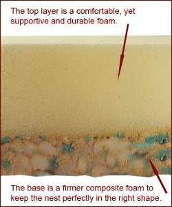 Foam explanation for FB July 16 copy