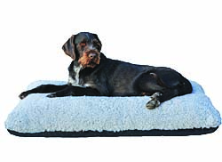 Firm dog bed with soft, springy cover