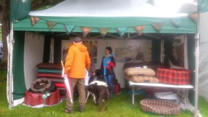 Picture from the front of the stand with all the dog beds