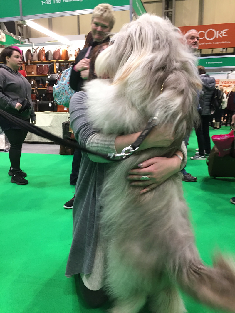 Dog hugging its owner and an admiring onlooker.