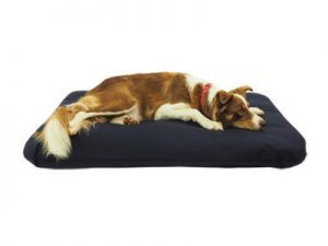 Durasoft Mattress Dog Bed with Skye the Collie