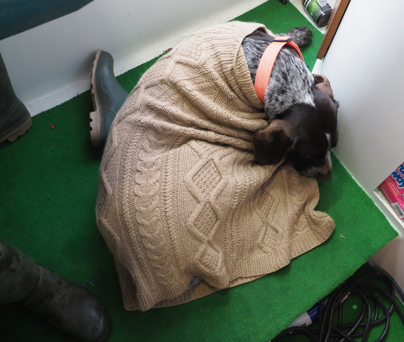 I didn't have my nice fleece jumper with me, so somebody's jumper was second best. Very cosy.