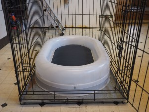 Our new, smaller chew proof bed fitting in a cage