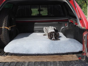 Firm dog bed fitted exactly to the back of a truck pickup.