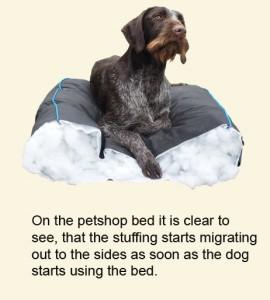 petshop-bed-with-gaia-on-copy