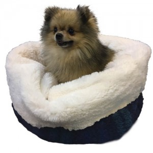 Pomeranian in White w Black Watch