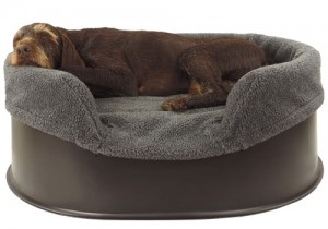 Raised dog bed with Grey liner