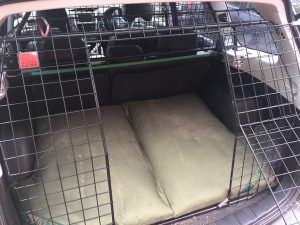 Bespoke Dog Beds in the rear of Subaru Forester