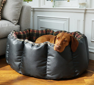 Nest dog beds and covers.