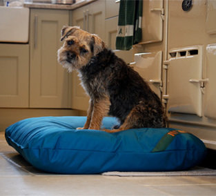 Dog Mattress beds and covers.