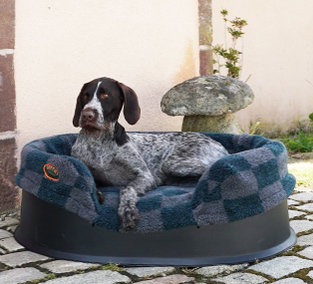 Buy Luxury Dog Beds UK Online | British Handmade Heavy Duty