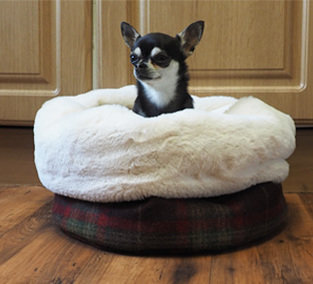 Buy Luxury Dog Beds Uk Online British Handmade Heavy Duty Chew