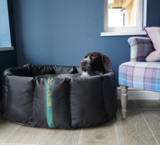 Tuffies Dog Beds Vouchers.