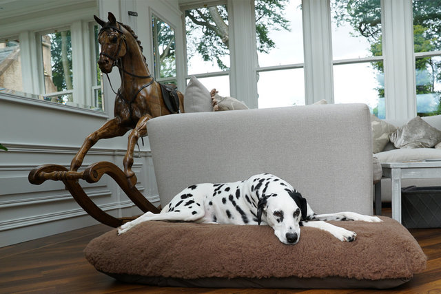 The Fluffie Tuffie Mattress Dog Bed Cover