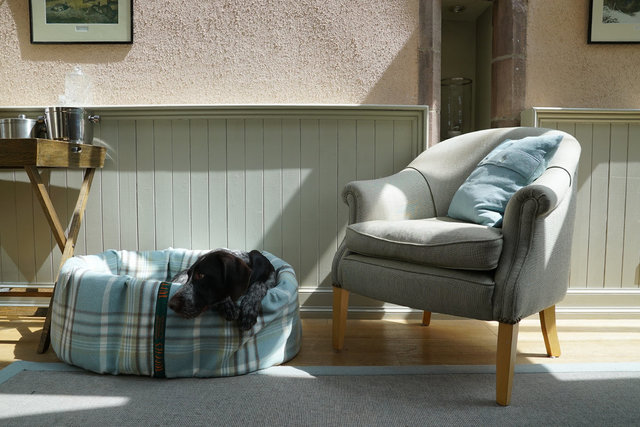 The Highland Nest Dog Bed Cover
