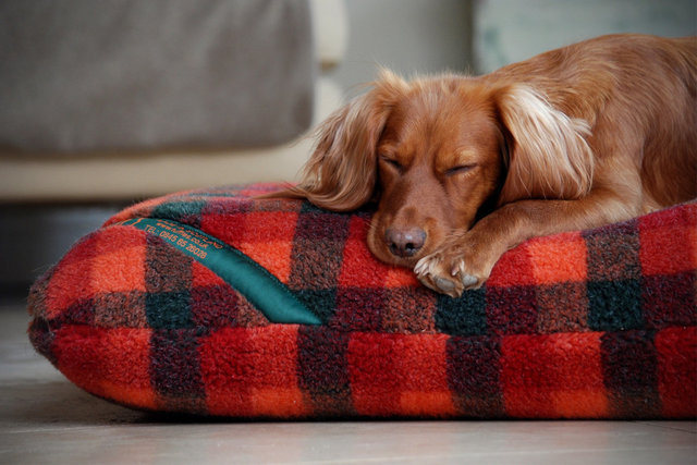 The Luxury Fleece Mattress Dog Bed Cover