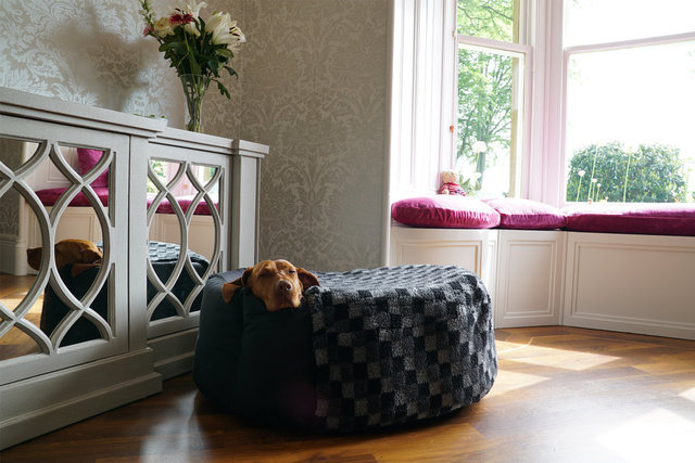 The Nest Dog Bed Sock
