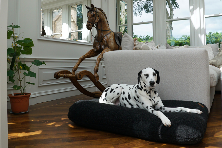 The Light Fleece Mattress Dog Bed Cover Thumbnail