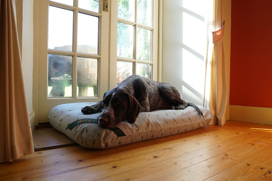 The Twill Mattress Dog Bed Cover Thumbnail
