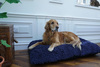 The Dog Dryer Bed Cover Thumbnail
